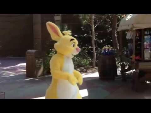 Winnie Pooh Rabbit Finds Friends & Marches Easter Disneyland Springtime Round-Up 2015 Meet & Greet