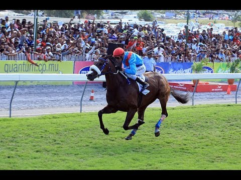 THE AIR MAURITIUS MAIDEN CUP 2017 - ENAAD (Steven Arnold) [GROUP 1]