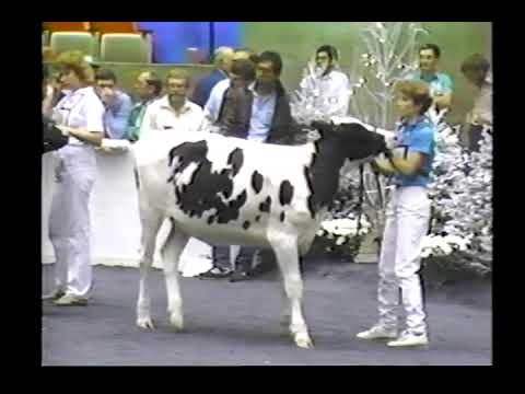 1986 World Dairy Expo