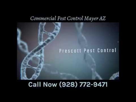 Commercial Pest Control Mayer AZ