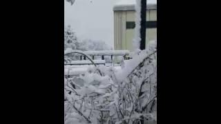 Video Kaisar south korea  삼왼 유리 download MP3, 3GP, MP4, WEBM, AVI, FLV Januari 2018