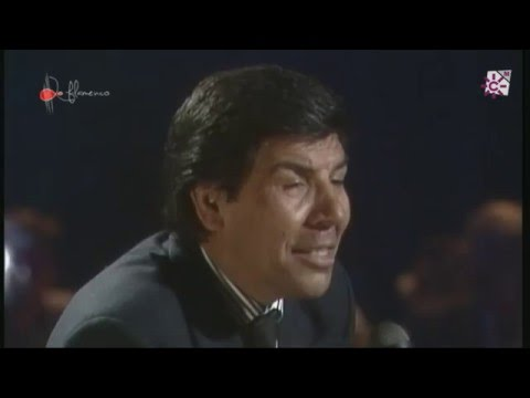 Paterna de Rivera (Cádiz) XLII Concurso Cante Peteneras RANCAPINO HIJO Tangos