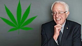 Bernie Sanders Introduces Ending Federal Marijuana Prohibition Act