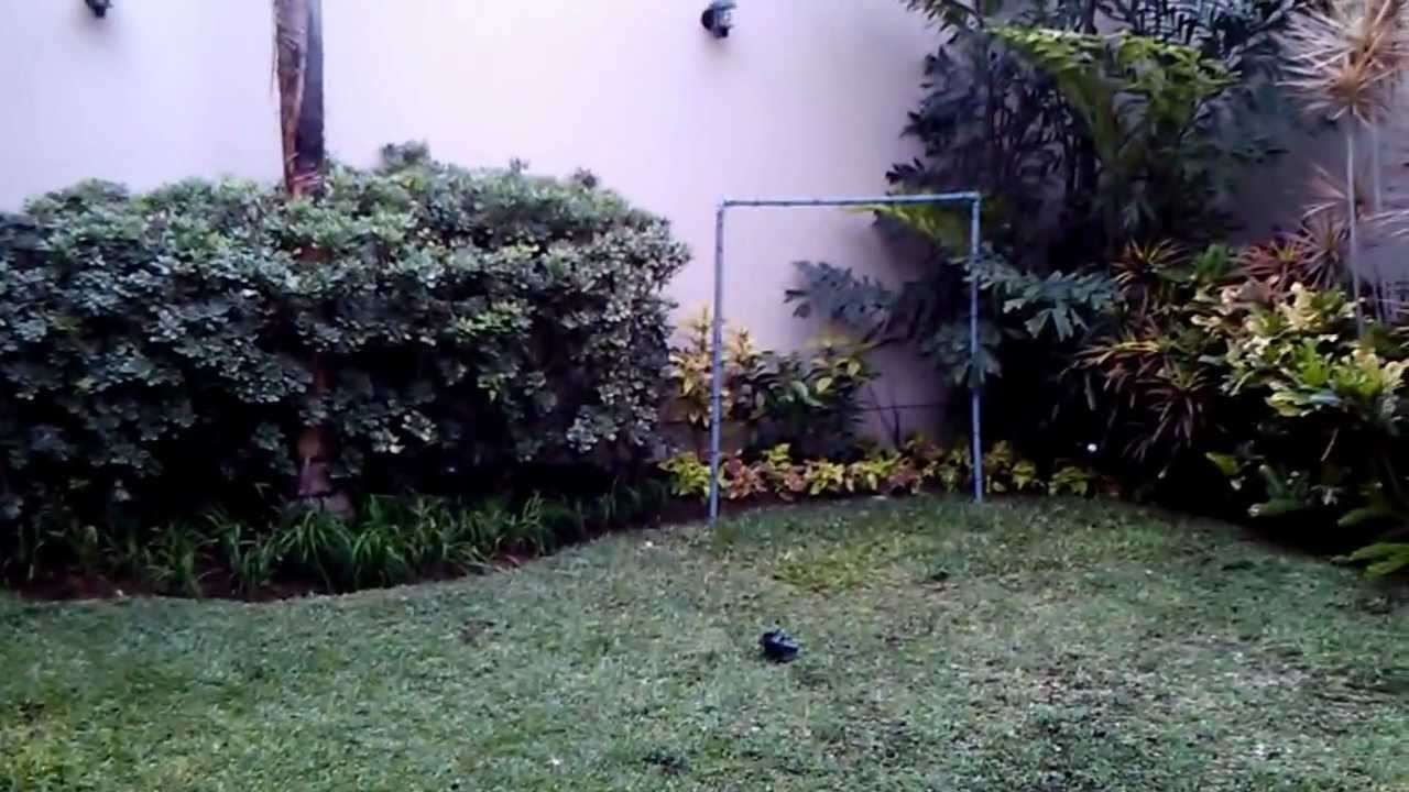 jardin tropical youtube