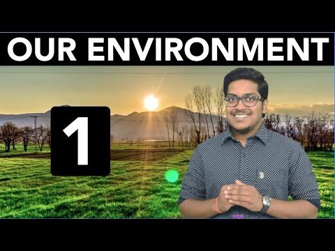 Natural Resources: Our Environment (Part 1)