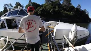 Ferry Ride from Parramatta to Circular Quay Sydney