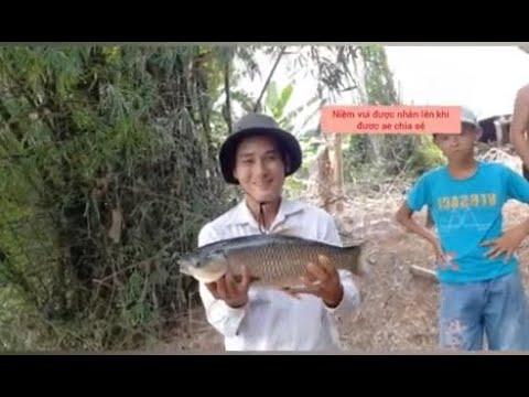 Câu cá sông | Sông Quang Nam – Đà Nẵng: Lên em trôi buổi câu thứ 2 tại sông Vĩnh Điện.