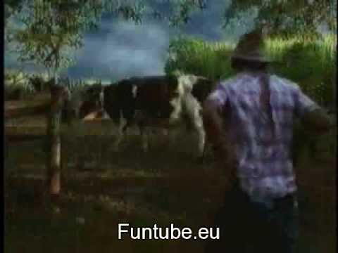 www sex cow and womanxxx youtube com