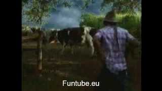 Video Cow Sex By a Man download MP3, 3GP, MP4, WEBM, AVI, FLV Juli 2018