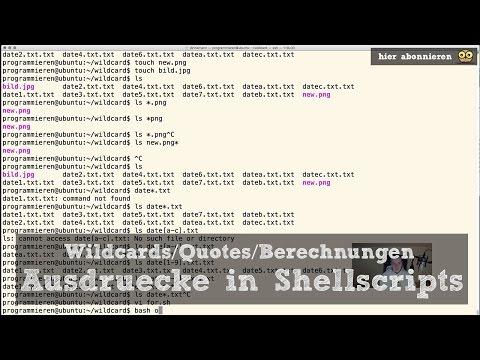 Unix Shellscripting #4 – Ausdrücke mit Wildcards, Quotes und Berechnungen