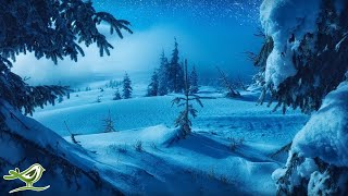 Calm Piano Music With Beautiful Winter Photos • So