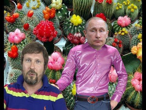 Рубаха Путина - Видео онлайн