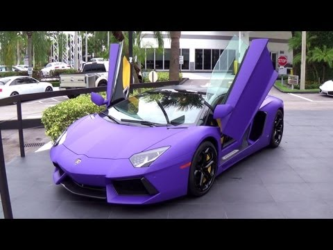 Lamborghini Aventador Matte Purple Supercar Start Up And Drive Miami