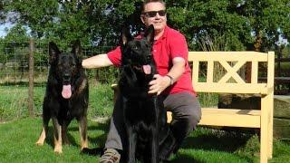 Colin Tennant Ma  Dog Behaviour 2