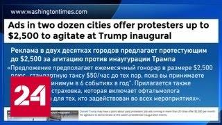 СМИ узнали, сколько получают участники митингов против Трампа