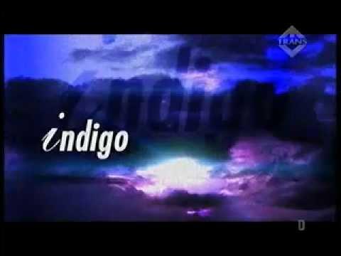 Индиго транс