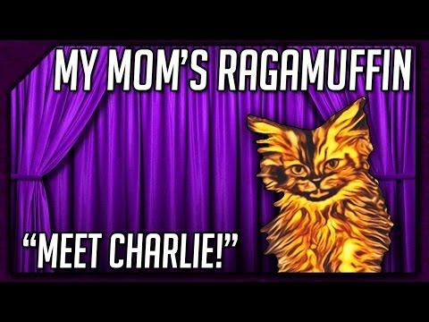 My Mom's Ragamuffin || Meet Charlie