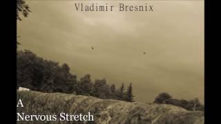 Vladimir Bresnix A Nervous Stretch