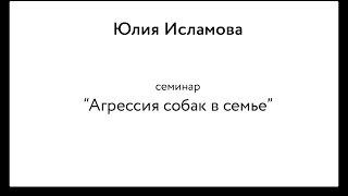 "Юлия Исламова: семинар ""Агрессия собаки в семье"" (1/4)"