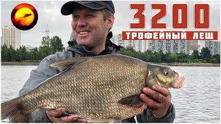 Трофейный лещ / Фидер на Москва реке / Рыбалка в июле / Братеевские Лещи