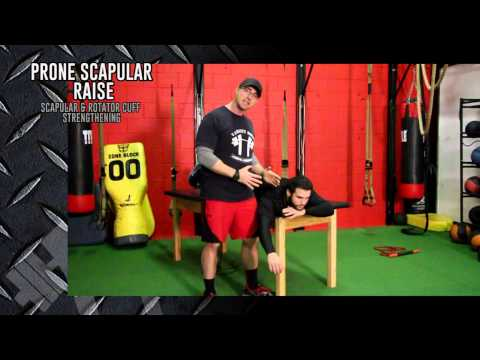 Varsity House Gym - Flexibility and Mobility Drills for Throwing Athletes