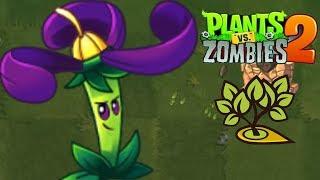 ✔️NIGHTSHADE SỨC MẠNH CỦA CỎ BAN ĐÊM !! - Plants Vs Zombies 2 - Hoa Quả Nổi Giận 2
