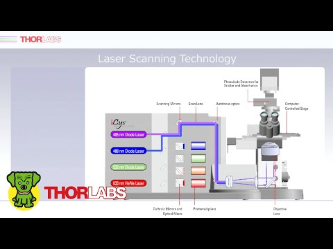Quantitative Imaging Cytometry Overview