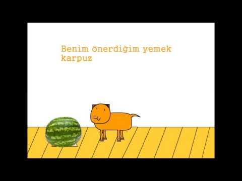 Bir Evcil Hayvan Nasıl Eğitilir [açıklama Kısmına Bak]