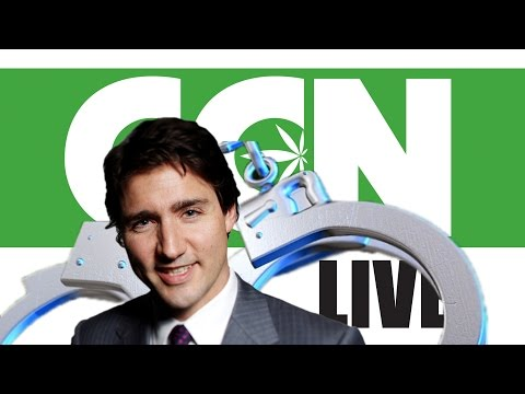 Cannabis Culture News LIVE: Tell Justin Trudeau To Stop The Marijuana Arrests