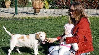 Köpek ve Bebek Bir Arada Olur mu? | Merve'yle Yaz