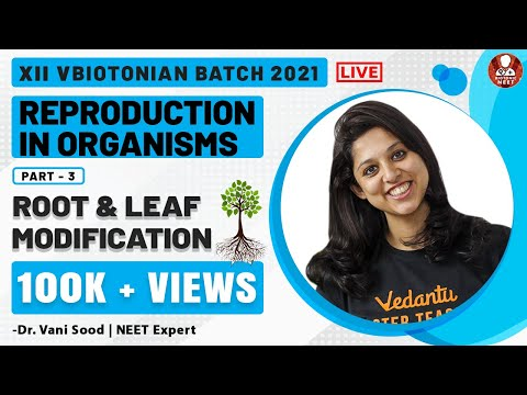 reproduction-in-organisms-part--3-|-root-&-leaf-modification-|-biology-class-12-chapter-1-|-vedantu