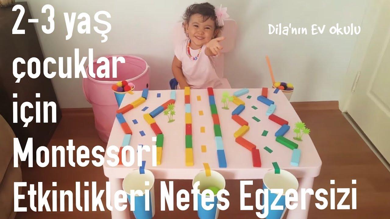 Çocukların duyusal gelişimi 2-3 yıl. Çocukların duyusal gelişimi için oyunlar