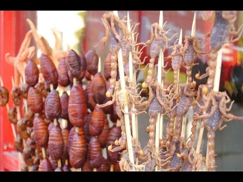 Top 10 Strangest Food in China - WARNING THIS VIDEO MAY MAKE YOU SICK!