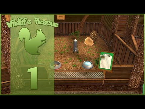Wildlife Rescue! || Squirrels & Skunks?! - Episode #1