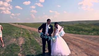 Свадебный клип Д & С