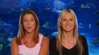 видео Как организовать аквариумный бизнес?
