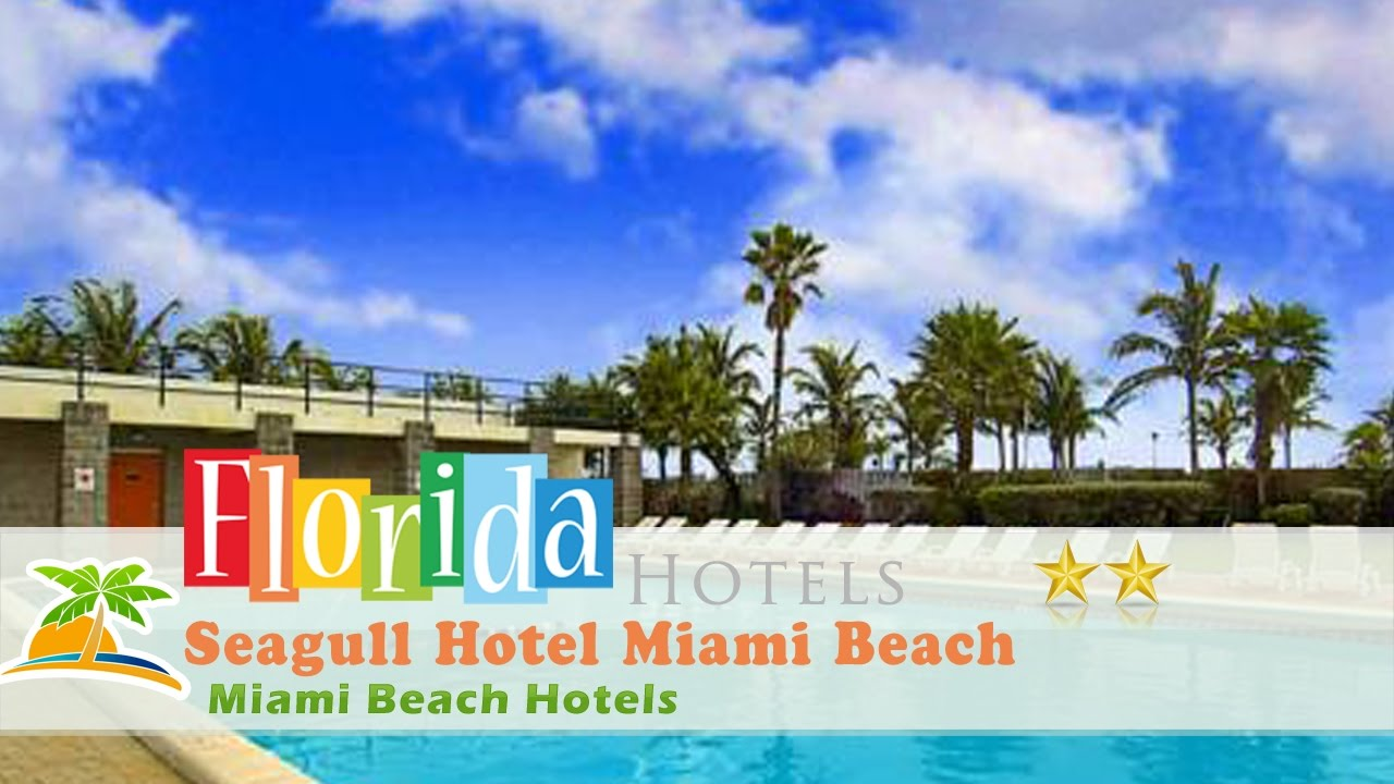 Seagull Hotel Miami Beach Hotels Florida