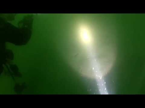 Scuba diving mistake - Not following the shotline