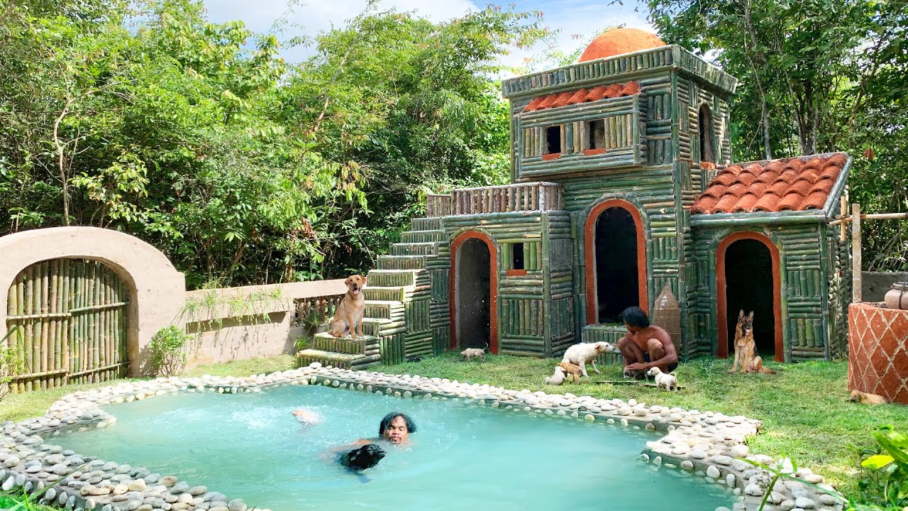 Absolutely Perfect Building Villa House & Groundwater well & Swimming Pool And Rescue Abandoned Dogs