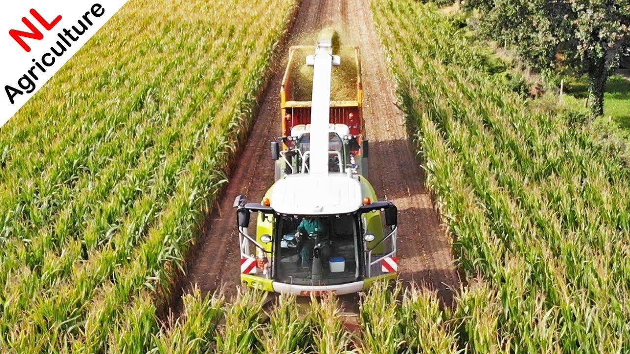 Achteruit 6 Rijen Mais Hakselen Met De Tractor Agritradertv 9 By Agritradertv