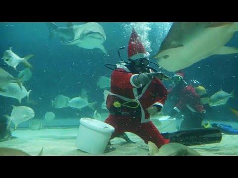 Corey Calhoun - Scuba Santa - Gift For You & You