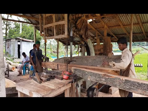 teak-wood-$300-per-cft-cutting-at-sawmill।teak-wood-with-high-quality-cutting-for-furniture।logging