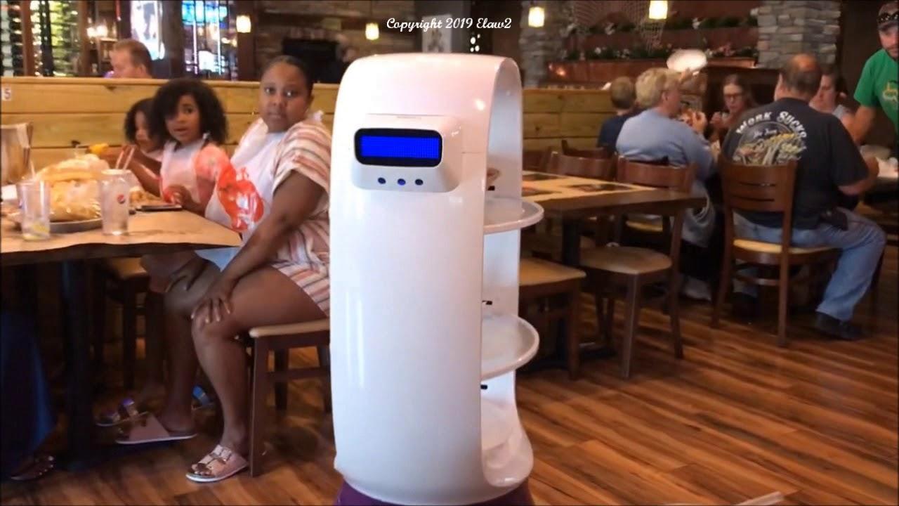 Visit To Robot Captain Crab Restaurant Newark Delaware With Robots