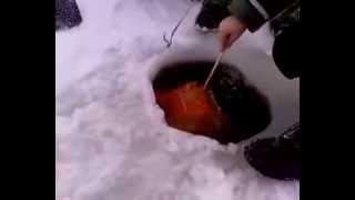 Устройство для протяжки сетей под льдом Laxström купить.