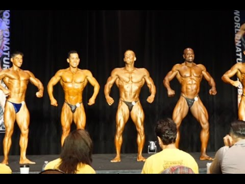 Pro Men's Bodybuilding 2016 WNBF WA State Natural