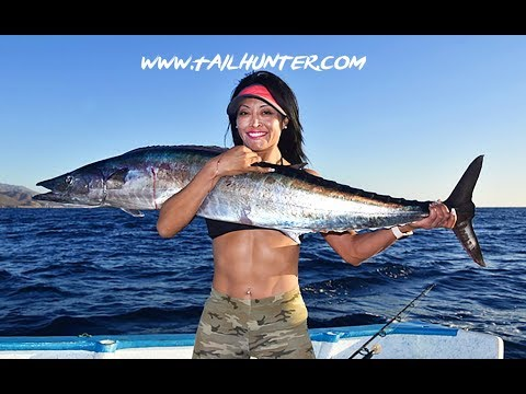 MEXICAN MINUTE LA PAZ FISHING REPORT From TAILHUNTER SPORTFISHING For WEEK Of  May 27-June 3, 2018