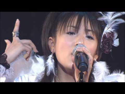 AKB48 Bird