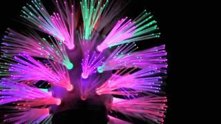 Bathroom Beacons: Twisted Bristles Burning Man 2013