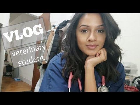 VLOG: Surgery! | Studying! | Scholarships!