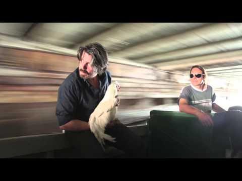 Interview Koen Vanmechelen on the Cosmopolitan Chicken Project